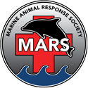Marine Animal Response Society (MARS)